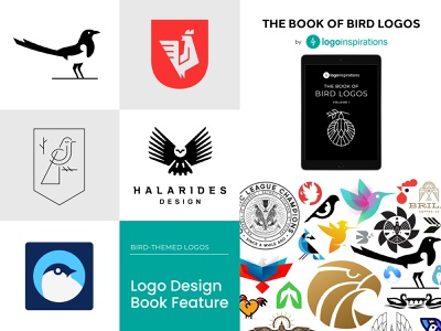 The Book of Bird Logos Feature rooster magpie owl collection feature book bird animal logo