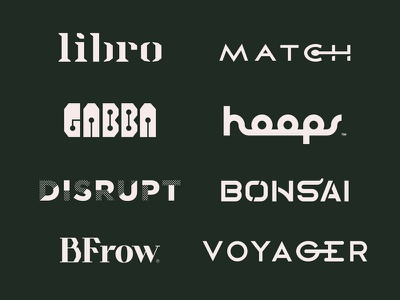 Logotype Collection roundup collection custom typography lettering logotype logo
