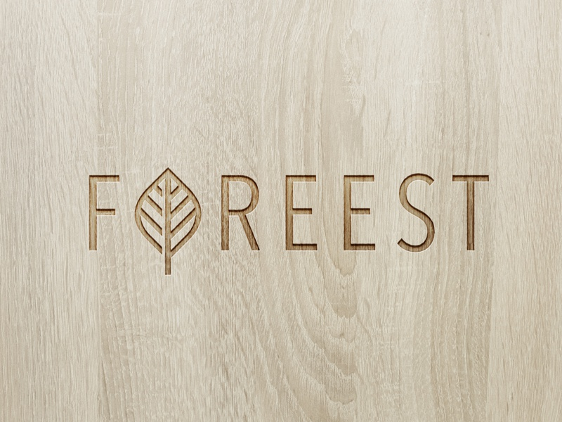 Foreest beech wood forest nature tree leaf lettering custom typography logotype logo