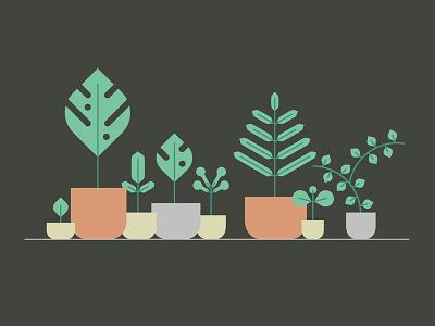 Jungle Plants colorful fresh air green illustration office pot leaf jungle plant nature