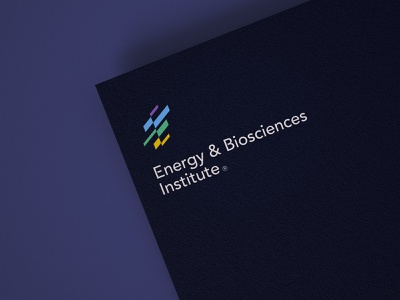 Enbis colorful abstract research institute technology innovation science bio energy logo