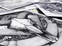 'Sanctum' illustration #1