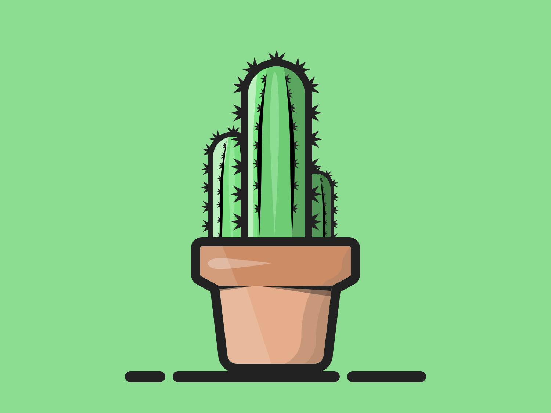 Cactus cactus plant vector 2d flat design sketchapp design portfolio illustration
