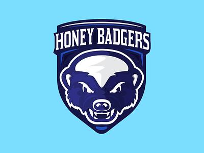 Honey Badgers Volleyball illustration vector sports pin seal honey badger logo