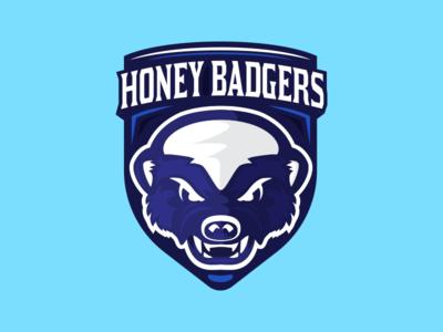 Honey Badgers Volleyball