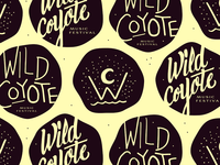 Wild Coyote Music Festival (Early Drafts)