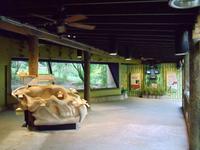 Complex Carnivores Exhibit