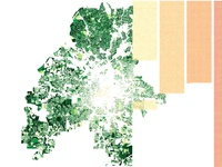 Atlanta's Tree Canopy Data Visualization