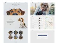 Pet Sitting Website Design.