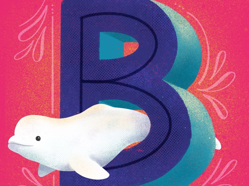 Beluga beluga whales sea creatures animals illustrated animals 36days-adobe 36days-b 36 days 36dayoftype typography lettering illustration hand lettering design
