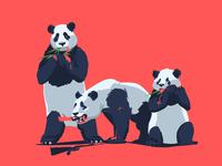 Panda Hunt