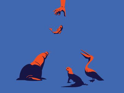Santa Cruz Market minimalism ecuador galapagos artwork vector digitalillustration poster graphics adobeillustrator digitalart drawing art illustration illustrator fisherman animals animal sea lion pelican iguana