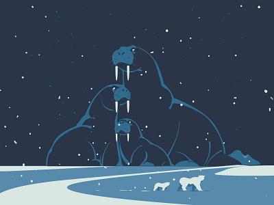 Inevitability night flatdesign graphicdesign animals drawingart polarbear arctic bear polar walrus wildlife digitalillustration design adobeillustrator digitalart vector drawing art illustration illustrator