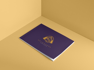 Splendore - Brochure design