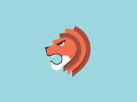 Lion Update