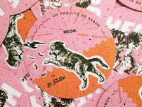 The El Felix Coaster