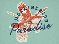 Mockingbird in Paradise