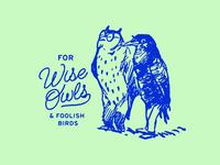 Wise Owls and Foolish Birds