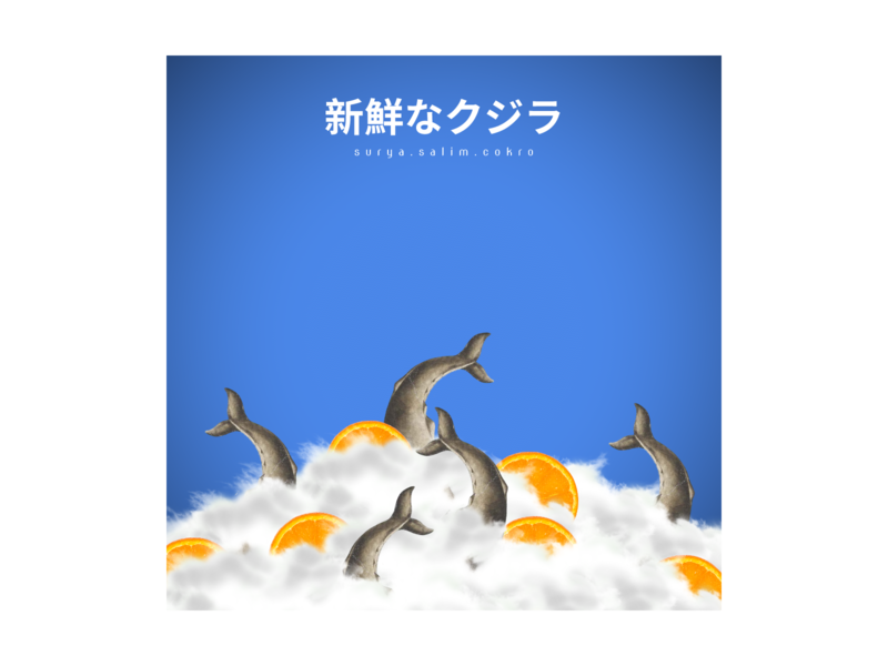 Fresh Whale indonesia japanese editing cool digital art illustration design