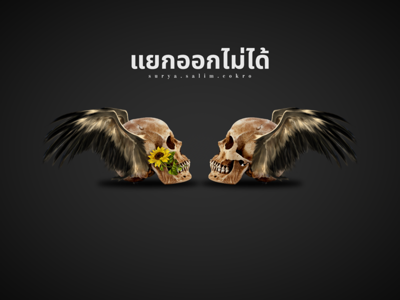 skull cool thailand editing digital art indonesia illustration design