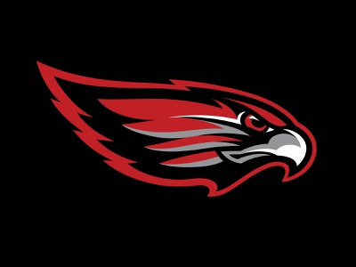 LV Red Wings Cut3 sports branding red wings eagle hawk bird nhl illustration logo hockey branding sports