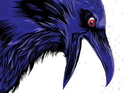 Baltimore Ravens purple half tone feathers beak field illustration wings bird raven beer football nfl