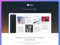 Bilisa - Landing Page