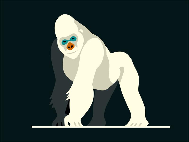 Gorilla design vector artwork animal demet kural illustrator illustration gorilla