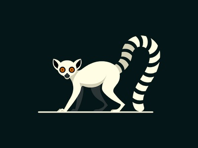 Lemur demet kural primate animal tail lemuridae illustration madagascar illustrator lemur artwork concept