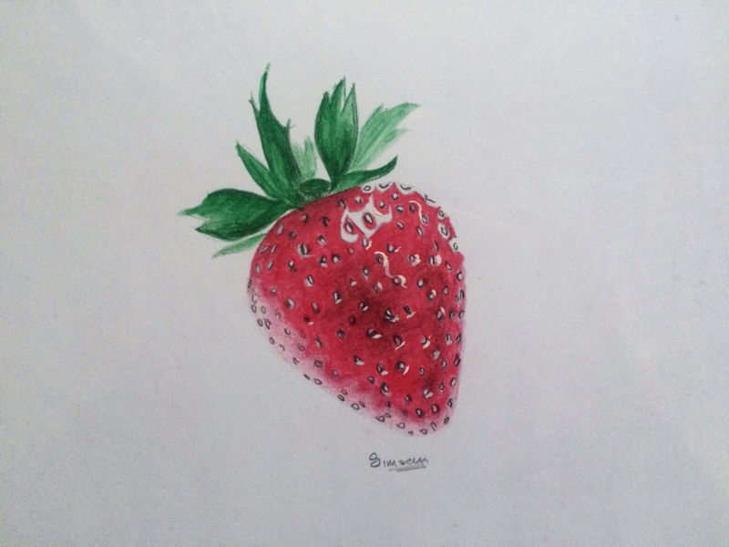 Realistic Strawberry Sketch strawberry artist sketch illustration