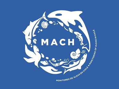 MACH Logo design logos brand logo design logo-design logo brand identity branding-design branding