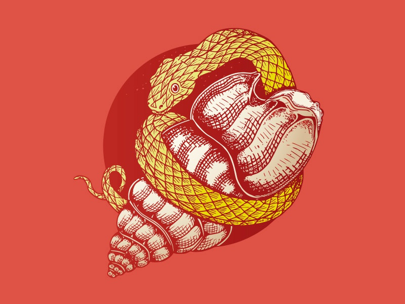 Snake And Shell book yellow serpent culture old school tattoo tattoo shell snake logo colors cartoon vector illustration