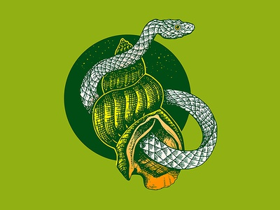 Green Snake And Shell