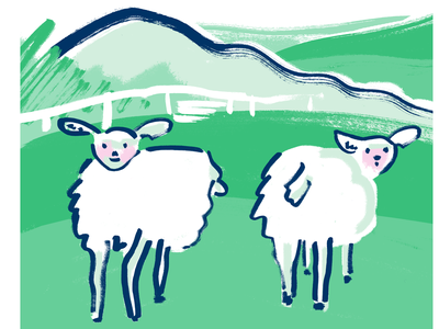 green - sheep