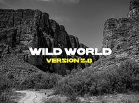 Wild World | Font Design typeface font font design branding logo icon typography ux vector ui design