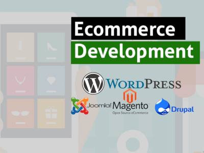 eCommerce Web Design and Development Company web design ecommerce web deisgn digital marketing firm e commerce ecommerce website ecommerce design