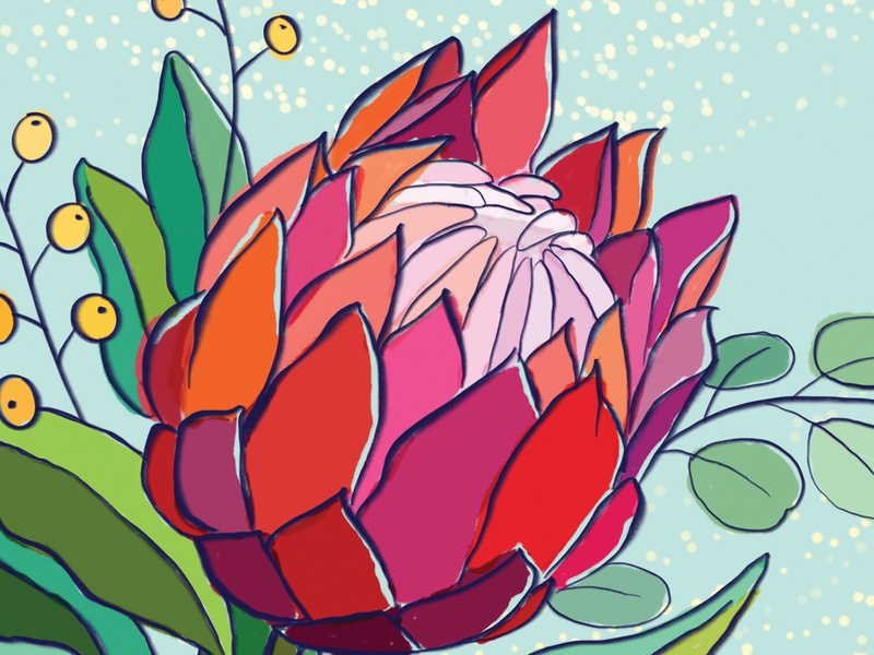 """Protea"" Note Cards flower illustration procreate art digital illustration note cards"