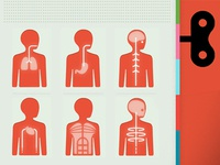 Body system Icons