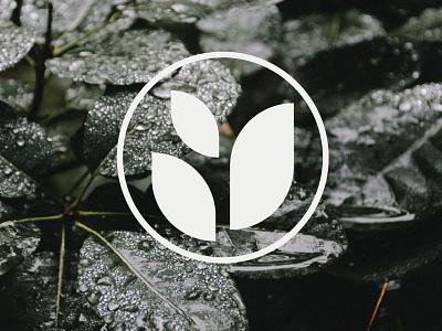 RePlan(e)t Logo Mark brand logos sustainable eco friendly eco green logo leaf logo sprout logo sprouting plant planet eco logo branding logo logo design
