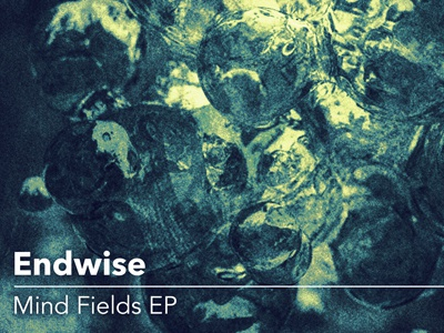 Endwise – Mind Fields EP