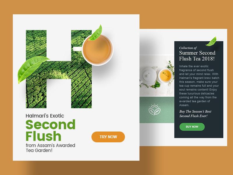 Newsletter design for Halmari tea advertising campaign advertising design advertising marketing marketing campaign illustration colours branding design graphic design newsletter