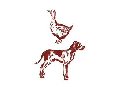 Bird Dog BBQ dog animals illustration logo design branding