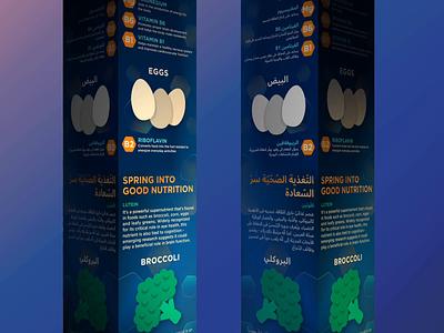 LTR & RTL (English/Arabic Infographics) email marketing marketing campaign landingpage website design animatedgif arabic typography arabic righttoleft rtl