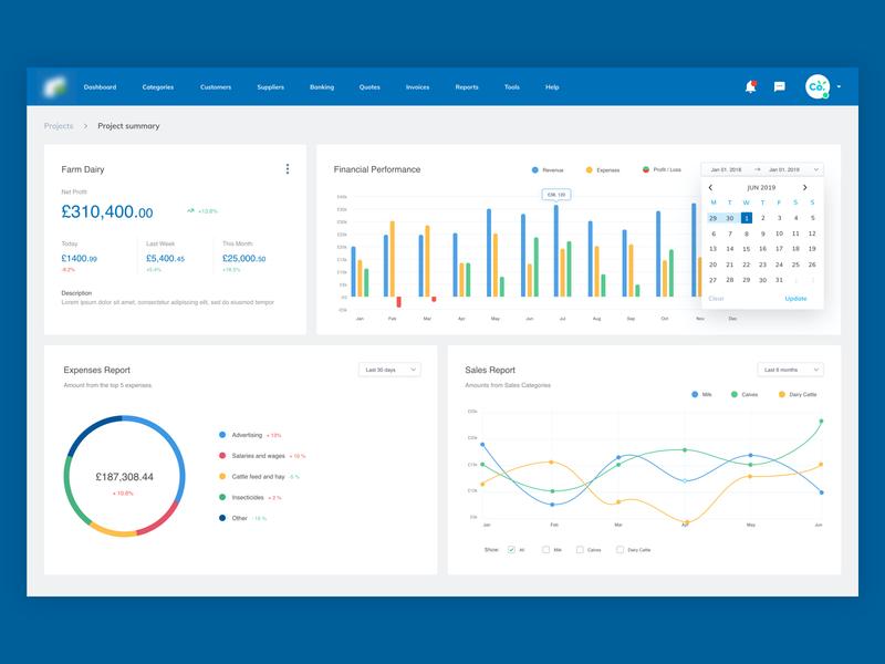 Finance Report Concept   Accounting Software Web App product design charts interface table web flat finance graph ux web application application webapp design webapp dashboard analytics ux design report design ui
