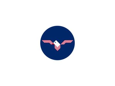 USA – Eagle 2