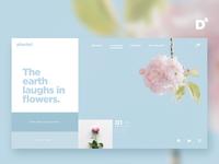 Website Design Concept- Plantel