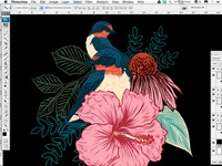 Barn Swallows/Floral Collage