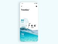 Surf App