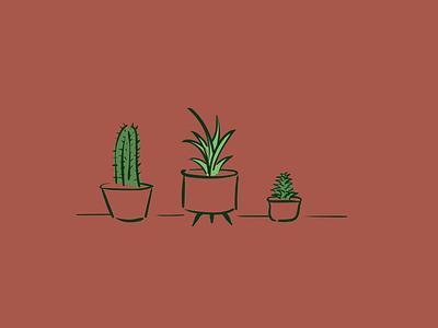 Plant Illustrations cactus succulent design vector illustration