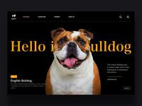 Pet webpage